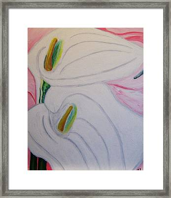 Cala Lillies Framed Print by Barbara Yearty
