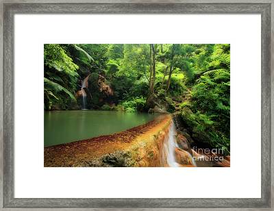 Caldeira Velha - Azores Islands Framed Print by Gaspar Avila