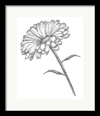 Christy Beckwith Studios Drawings Framed Prints