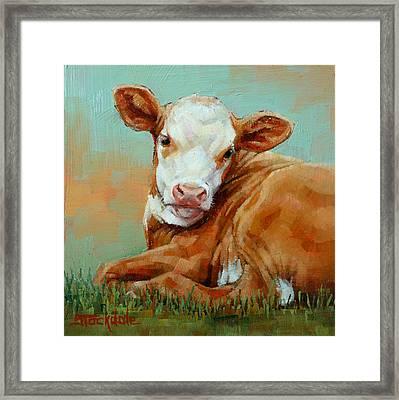 Calf Resting Framed Print