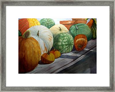 Calgo Pumpkins Framed Print by Nicole Curreri