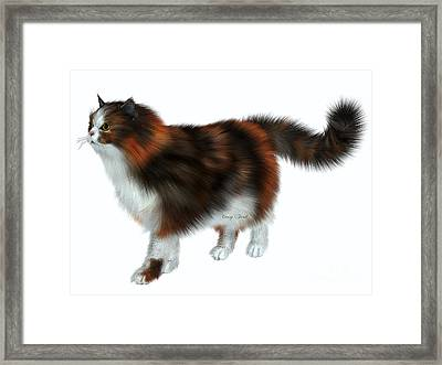Calico Cat Framed Print by Corey Ford
