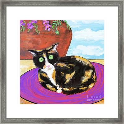 Calico Cat On A Rug  Framed Print