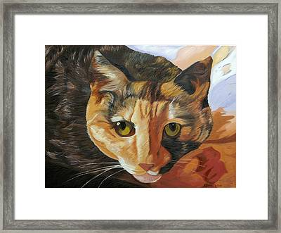 Calico Framed Print by Kenneth Young