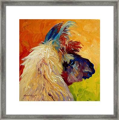Calico Llama Framed Print