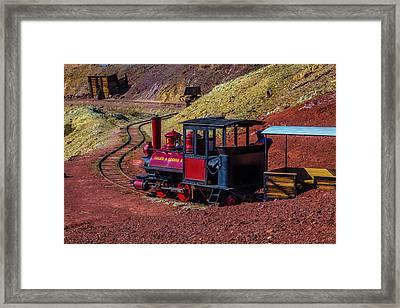 Calico On The Rails Framed Print