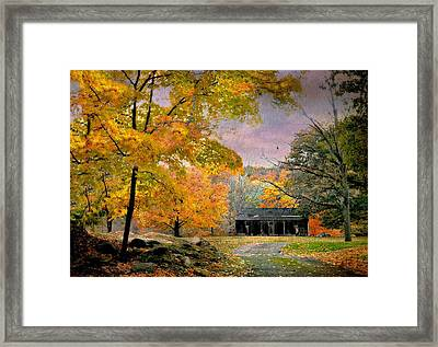 Caliente Framed Print by Diana Angstadt
