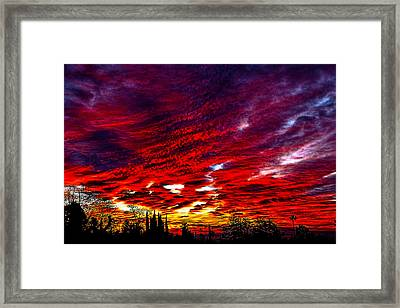 Sunrise In Los Angeles Framed Print by Renee Anderson
