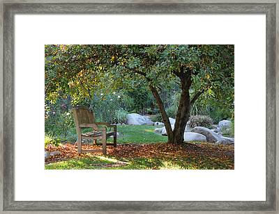 California Autumn Framed Print by Jan Cipolla