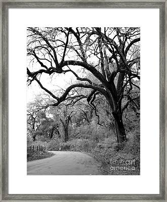 California Country Road Framed Print