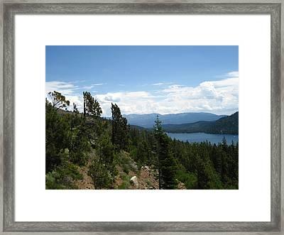 California Dreaming Framed Print