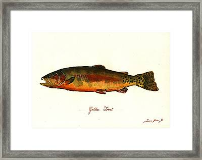 California Golden Trout Fish Framed Print