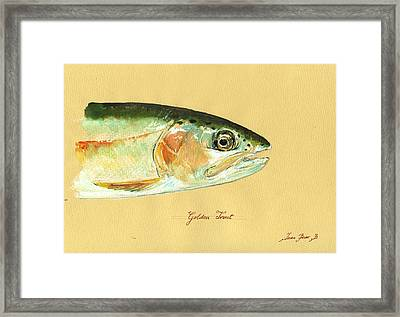 California Golden Trout Framed Print