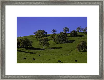 California Green Hillside Framed Print