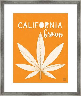 California Grown Cannabis Orange- Art By Linda Woods Framed Print