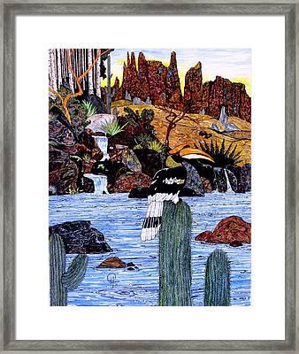 California Hornbill Framed Print by Doug Hiser