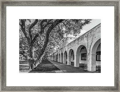 California Institute Of Technology Campus Trees Framed Print