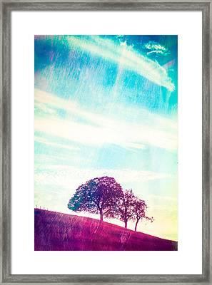 California Memories  Framed Print