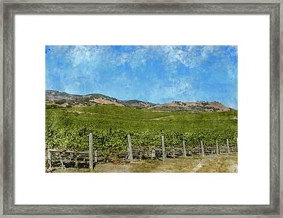 California - Napa Valley Vineyard Framed Print by Brandon Bourdages