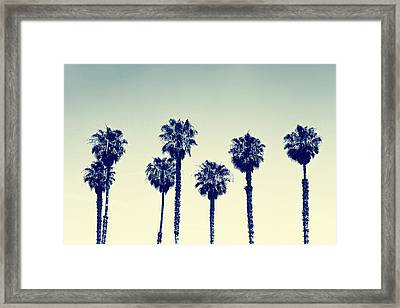 California Palm Trees Framed Print