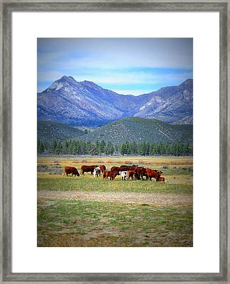 Framed Print featuring the photograph California Pastures by Glenn McCarthy Art and Photography