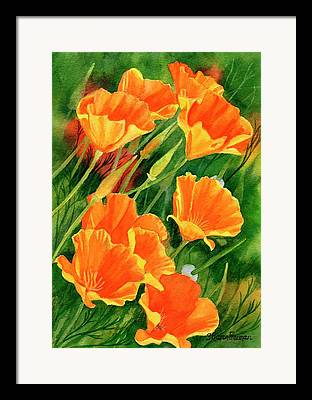 California Poppies Framed Prints