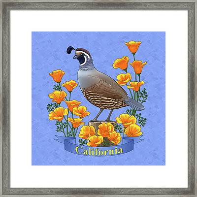 California Quail And Golden Poppies Framed Print by Crista Forest