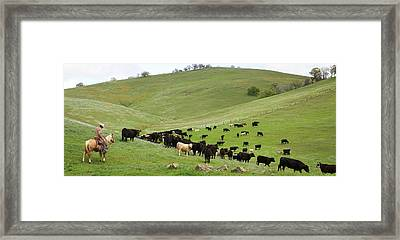 California Ranching Framed Print