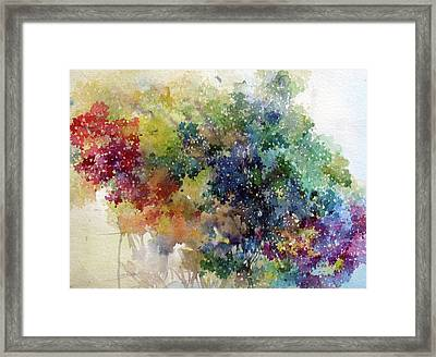 California Spring Framed Print