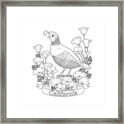California State Bird And Flower Coloring Page Framed Print