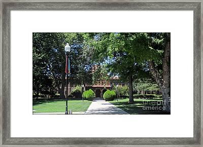 California State University Chico Framed Print