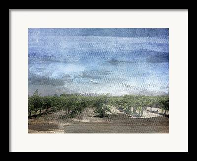 Vineyard Landscape Mixed Media Framed Prints
