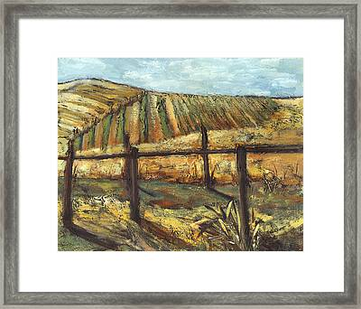 California Vineyard Framed Print by Susan Adame