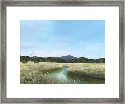 California Wetlands Framed Print