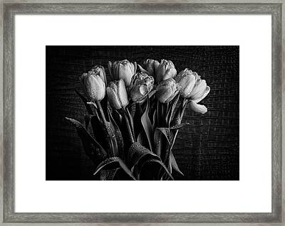 Caliginis No3 Framed Print