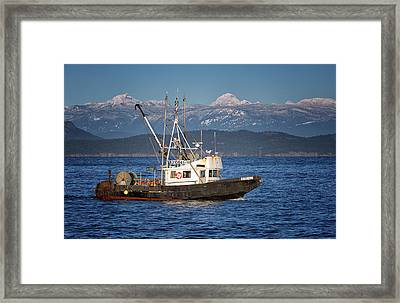 Framed Print featuring the photograph Caligus by Randy Hall