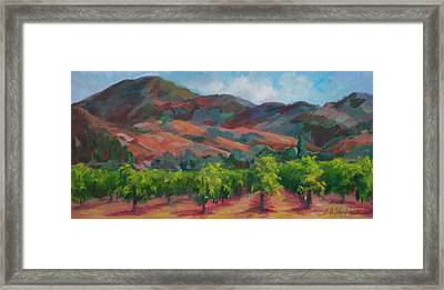 Calistoga Vineyards  Framed Print by Deirdre Shibano