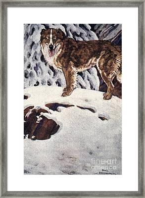 Call Of The Wild, 1903 Framed Print by Granger