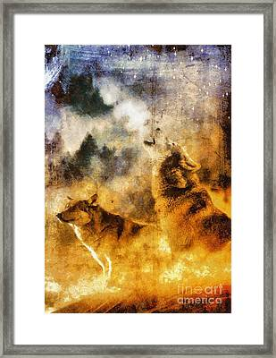Call Of The Wild - Wolves Framed Print by Sarah Kirk
