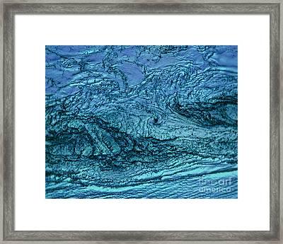 Call To The Sea Framed Print by Rebecca Lemke
