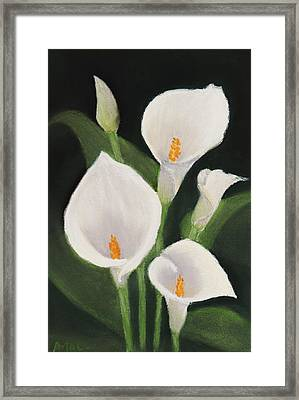 Calla Lilies Framed Print by Anastasiya Malakhova