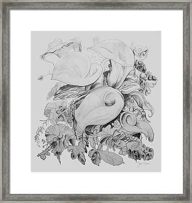 Calla Lillies In Black And White Framed Print by John Keaton