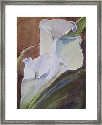 Calla Lilly Closeup Framed Print by Sandra Strohschein