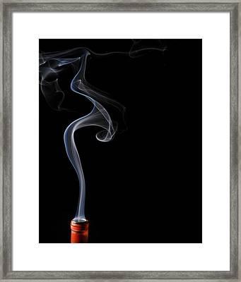 Calla Lilly In Smoke Framed Print by Bryan Steffy