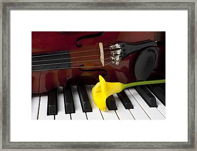 Calla Lily And Violin On Piano Framed Print by Garry Gay