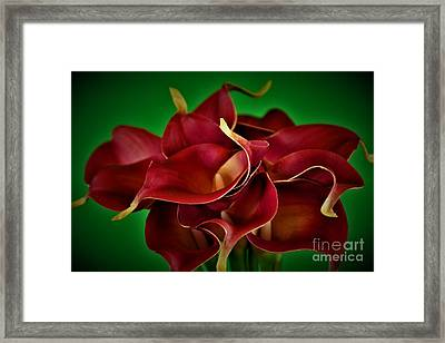 Calla Lily Bouquet Framed Print by Ray Shrewsberry