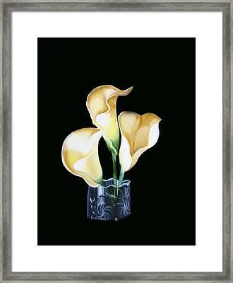 Calla Lily Framed Print by Darlene Green