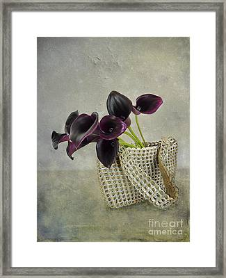 Calla's Bag Framed Print