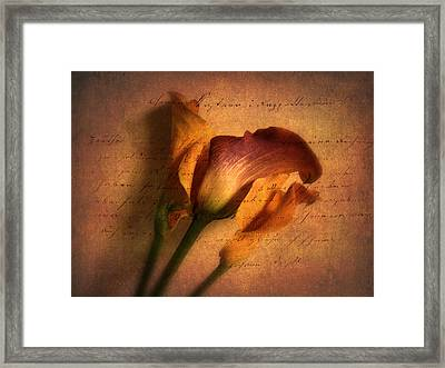 Callas By Candlelight Framed Print