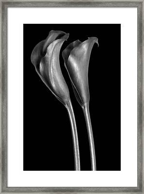 Callas Framed Print by Gary Zuercher